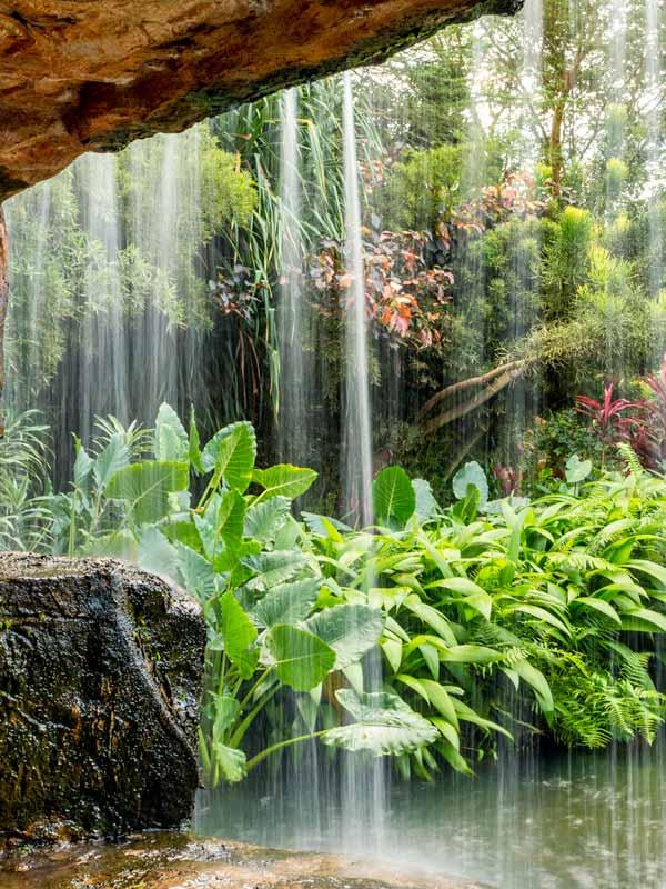 speke-resort---gardens